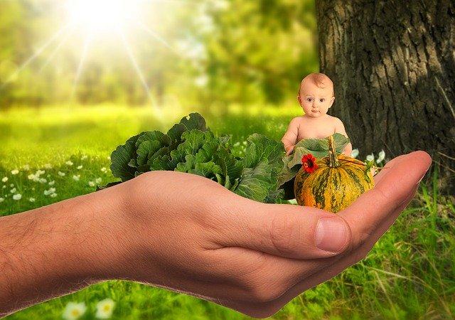 baby a zelenina