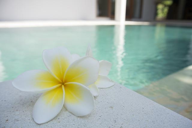 květy u bazénu.jpg